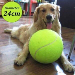 Dog Play Balls